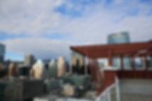 Common rooftop deck.JPG