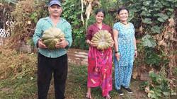 Community Garden Harvest