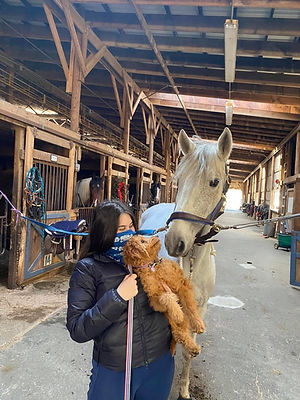 pup and horse.jpeg