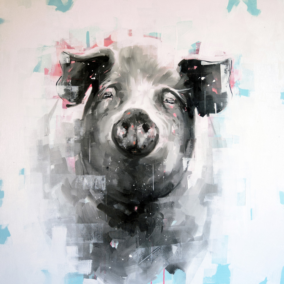Oil on canvas - 100x100
