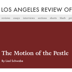 Motion of the Pestle