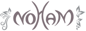 logo noham.png