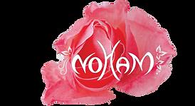 Logo NOHAM