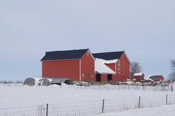Barn Location 8