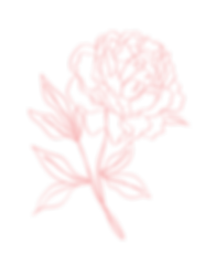 PinkFlower-1.png