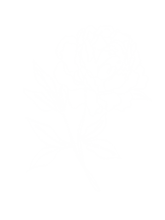WhiteFlower-1.png