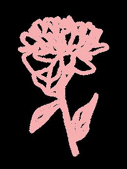 PinkFlower-2.png