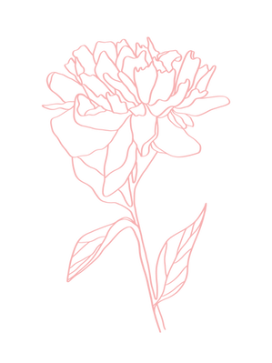 PinkFlower-2.png