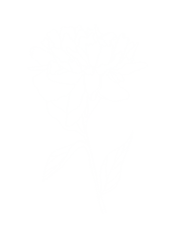 WhiteFlower-2.png