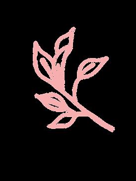 PinkLeaf-2.png