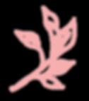 PinkLeaf-2_edited.png