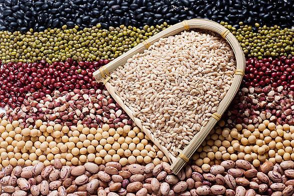 dry grains