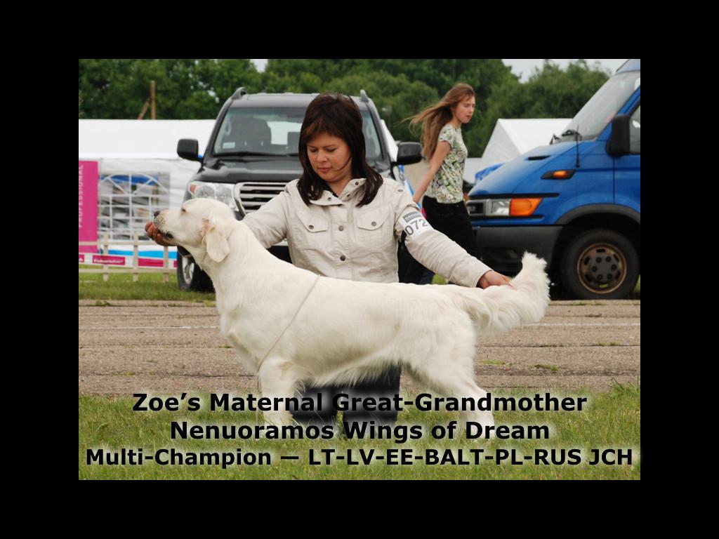 Zoe's Pictoral Pedigree.003.jpeg