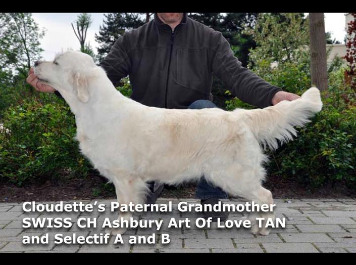 Cloudette's Pictoral Pedigree.004.jpeg