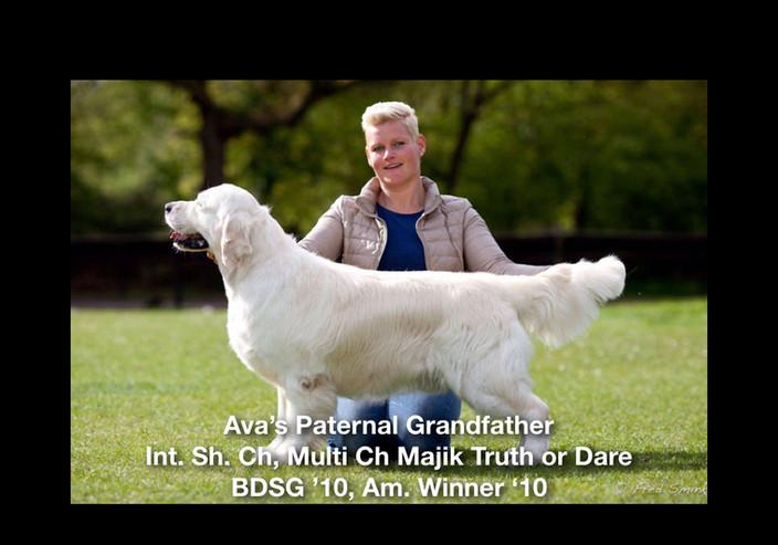 Ava's Pictoral Pedigree.002.jpeg