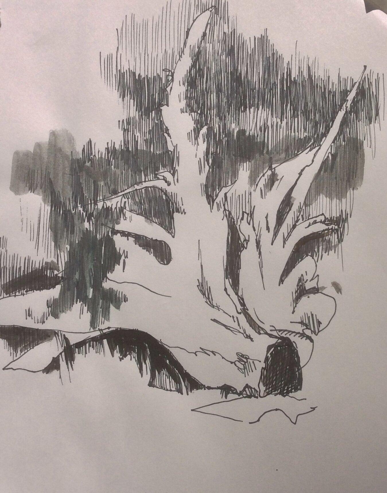 Alaska Sketch 14