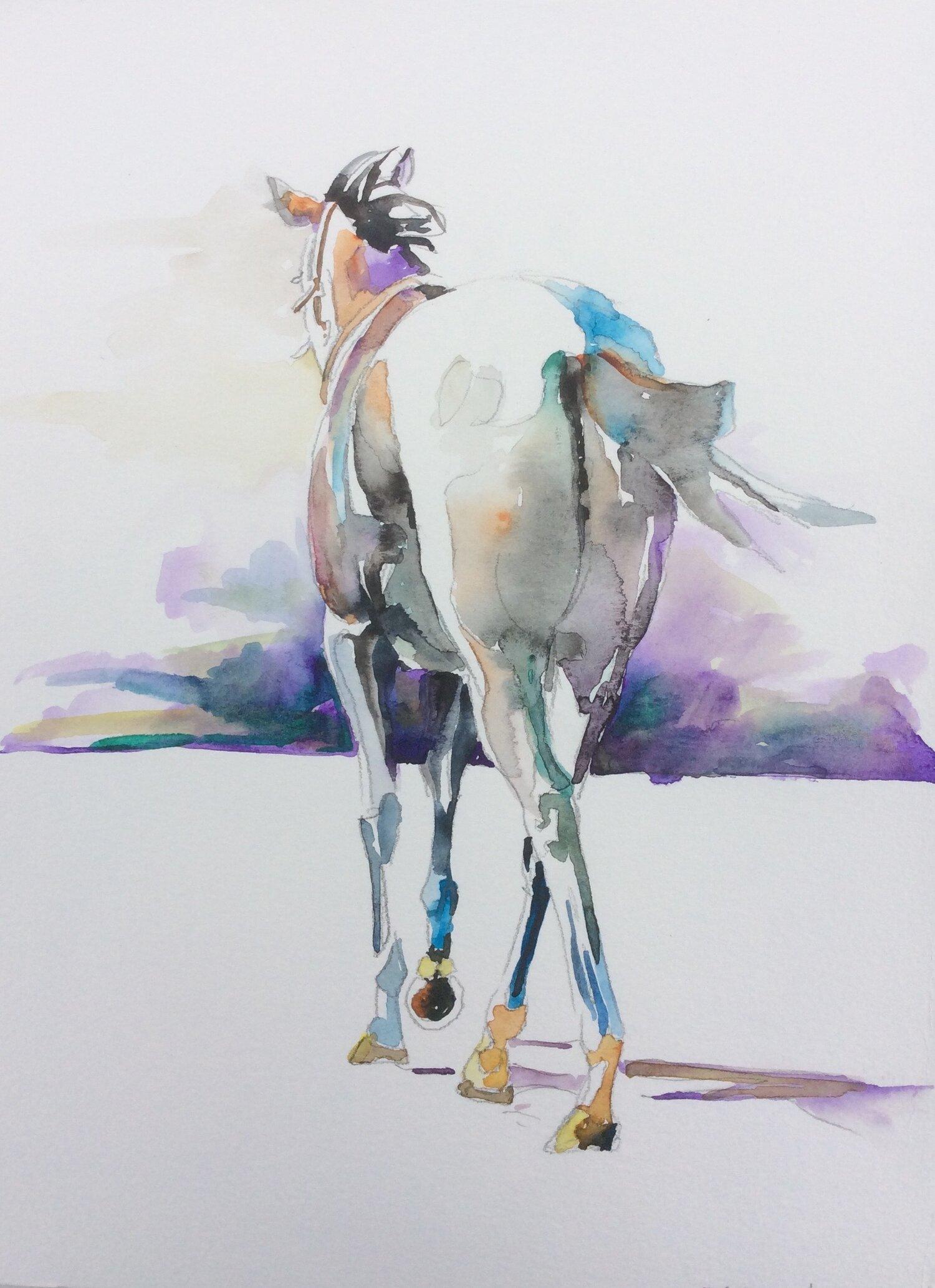Grey Horse Walking Away