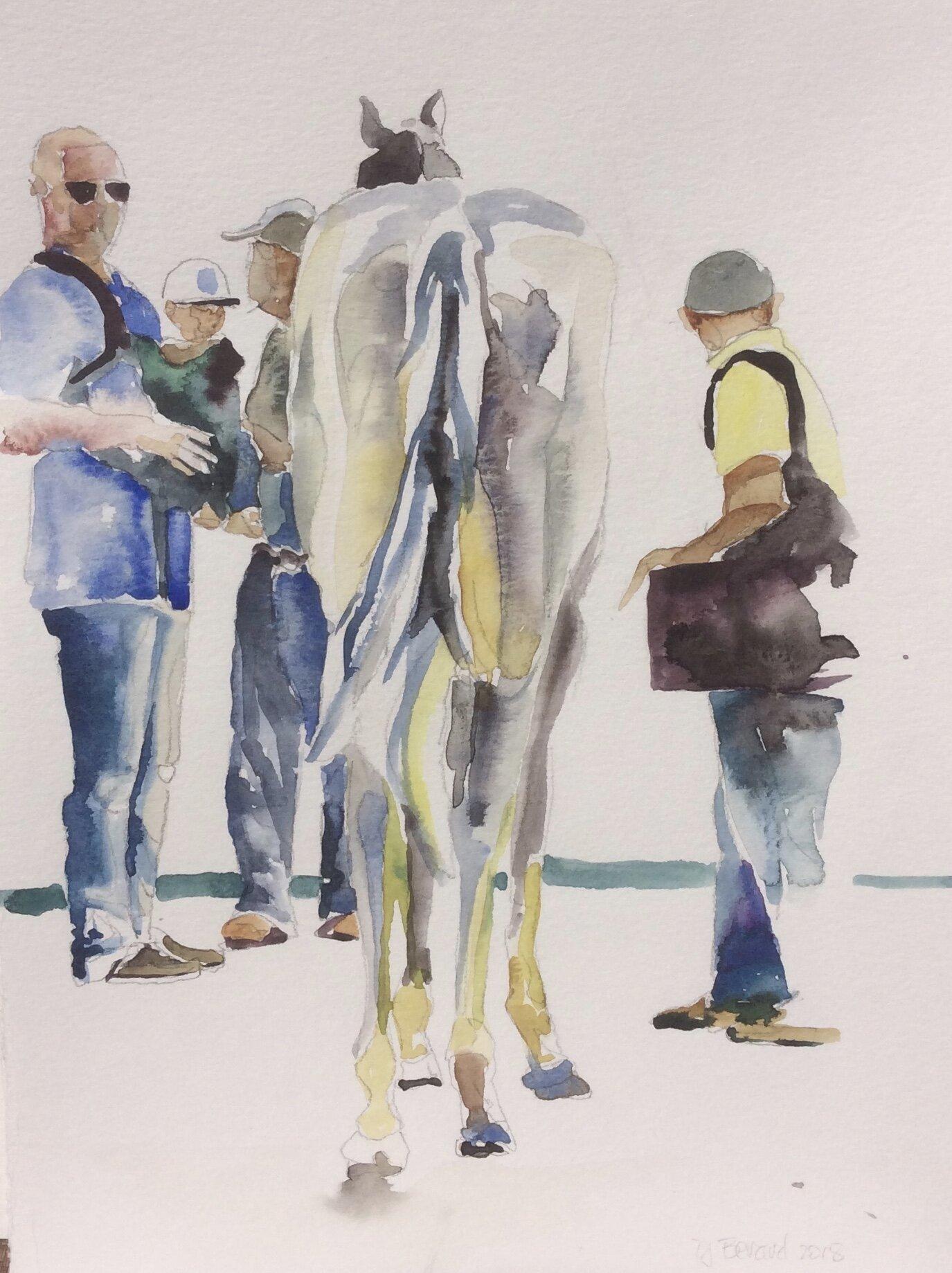 Grey Horse Butt