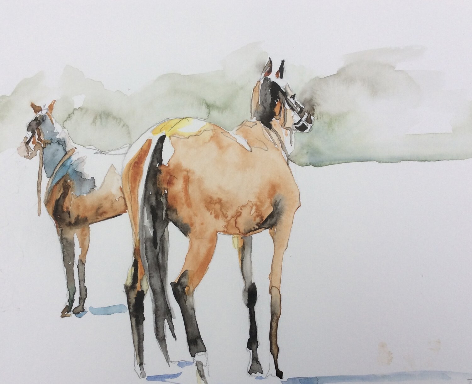 Horses Watching