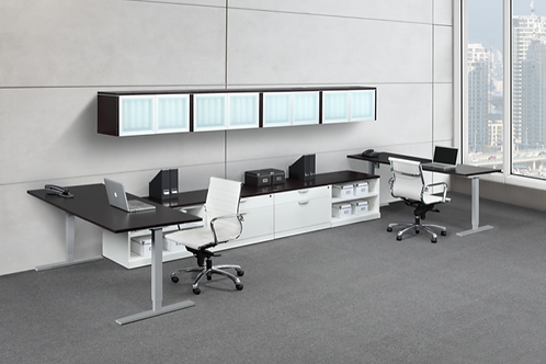Suite 223 2 person height adjustable unit with hutch.