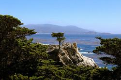 Monterey, California - May 2013