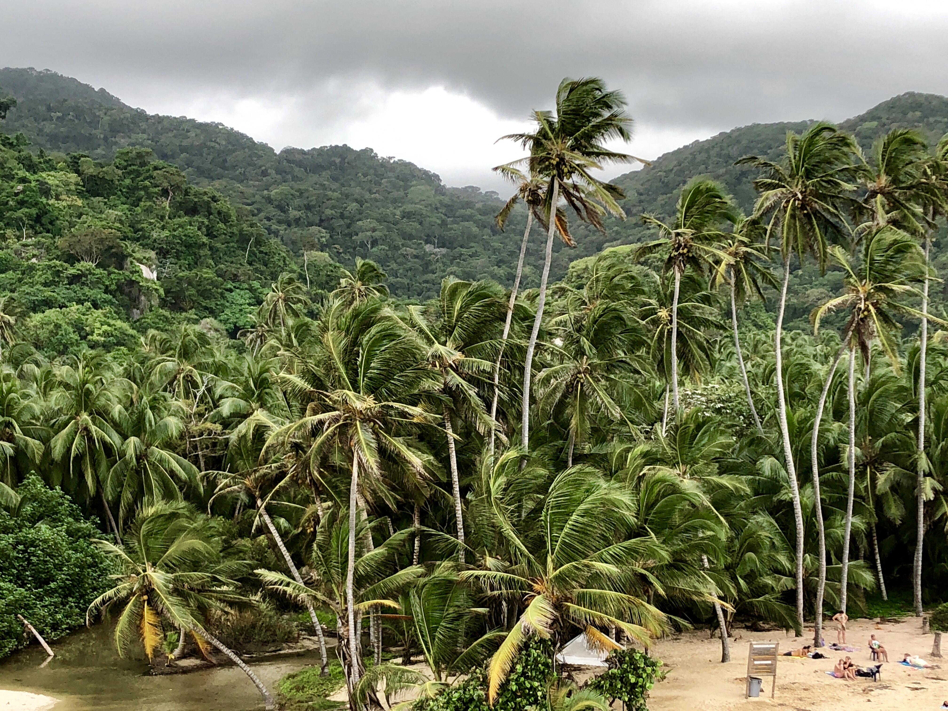 Parque de Tayrona