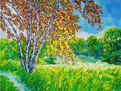 Sunlit Meadow. Last Days Of August.