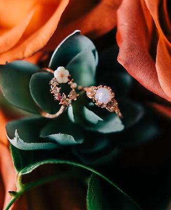rings on succulents.jpg