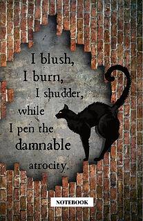 poe black cat with brick (2).jpg