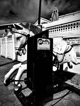 Shawn Berman Horse.jpg