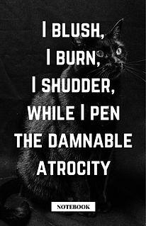 Poe Black Cat #2 - Copy.jpg