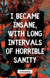 Edgar Allan Poe Quote -INSANE small.jpg
