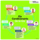 Infografia 3_condicionants.jpg