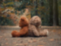 Teddy bears sit with their backs to each