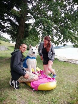 web - dog paddle 3.jpg