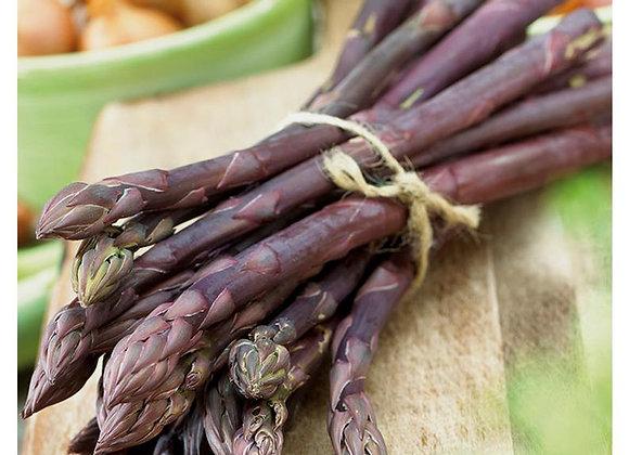 Asparagus - Sweet Purple