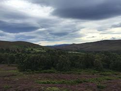 Шотландия3