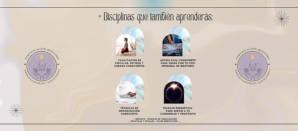 disciplinas holisticas
