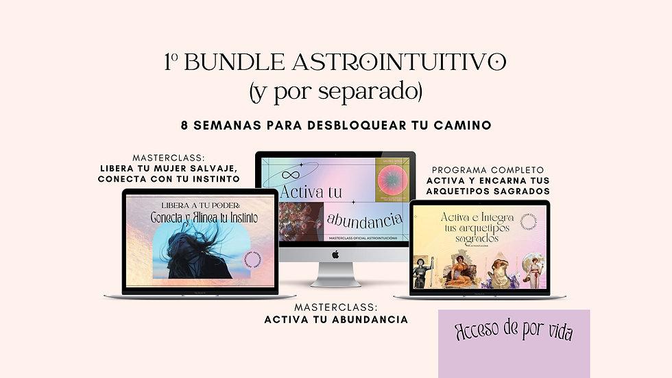 bundle cursos