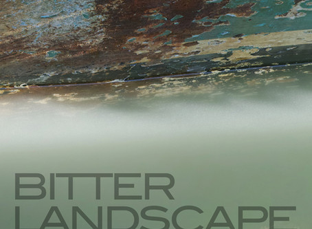 """A Conversation with Chris Greed - on """"Bitter Landscape"""""""