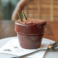 Piña Y Chocolate