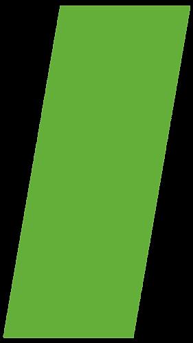 NN2.png
