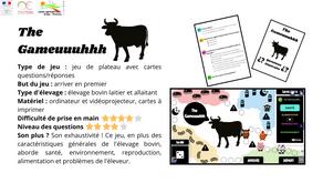 """Qui connaît le mieux l'élevage bovin ? Jouez à """"The Gameuuuhhh"""" pour le savoir"""