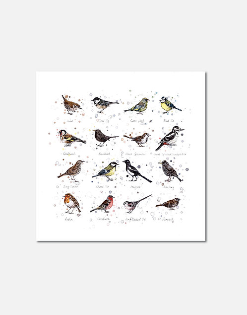 Garden Birds | Signed Limited Edition Print