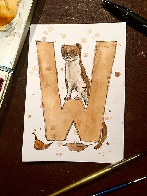 W is for Weasel | Original Ink & Watercolour