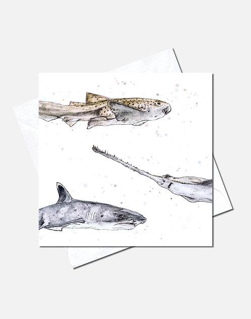 Teeth & Tails | Card Design