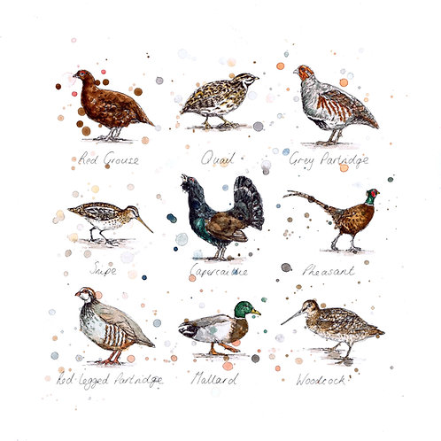 Game Birds | Original Ink & Watercolour