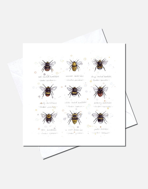 Buzz & Bumble | Card Design
