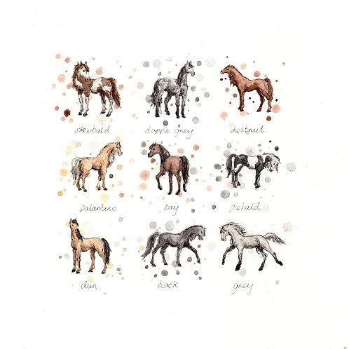 Horses | Original Ink & Watercolour