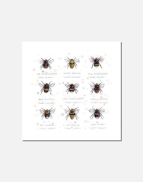 Buzz & Bumble | Signed Limited Edition Print